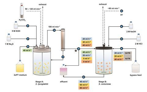 A scheme showing the bioreactors used in the process
