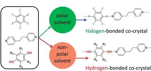 Hydrogen bonding versus. halogen bonding: the solvent decides