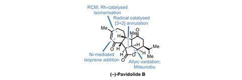 Pavidolide fig1