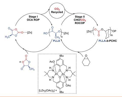 A scheme showing the proposed polymerisation pathway whereby the di-zinc catalyst bridges two catalytic cycles