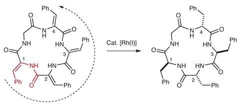 Hydrogenation catalyst generates cyclic peptide stereocentres in sequence Version 2