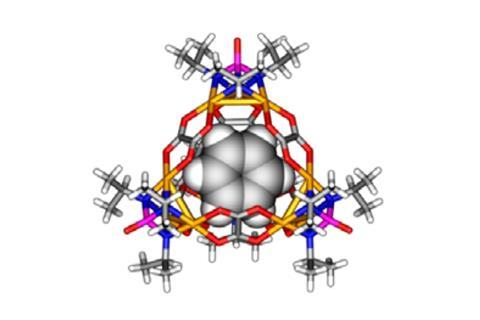 A picture showing a benzene molecule encapsulated within a charge-neutral tetrahedral cage