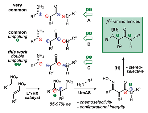 A scheme showing β2,3-Amino amides: retrosynthesis through carbon–carbon bond-forming approaches