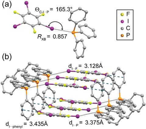 Halogen bond geometry in cocrystal 1