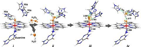 QM models of the self-assembled active site