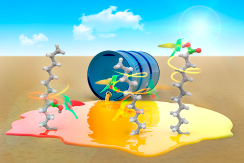 A conceptual image of a chemical spill with humming birds eating from fatty acid molecules