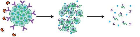 Condition responsive nanoparticles for managing infection and inflammation in keratitis