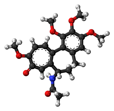 Ball-and-stick model of the colchicine molecule, a plant-based drug with various uses
