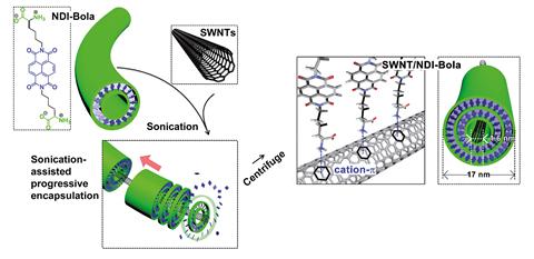An image showing the assembly of SWNT/NDI-Bola nanotubes