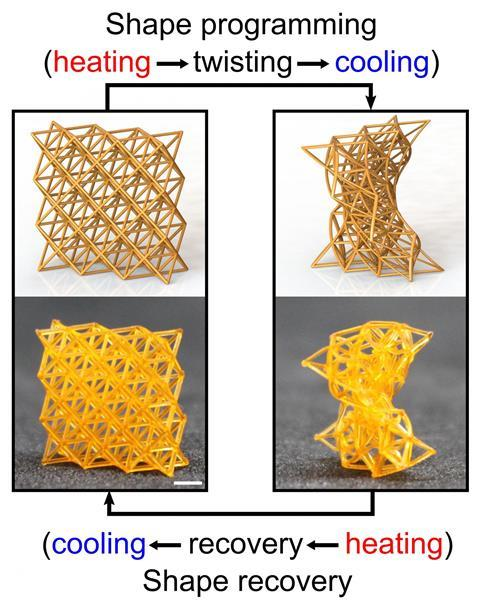 An image showing 4D-printed metamaterials