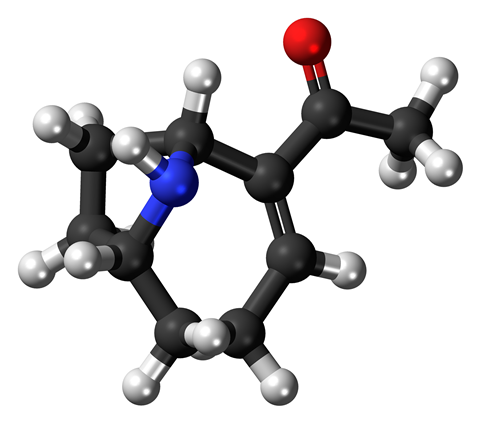 Ball-and-stick model of the very fast death factor molecule, also known as anatoxin-a, a toxin produced by cyanobacteria.