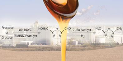 WEB-sugar-biorefinery-390