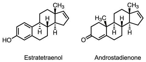 Pheromone chemical structures for Androstadienone and Estratetraenol