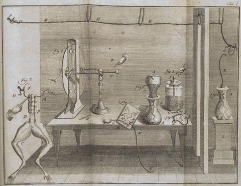 Luigi Galvani's experiment on post-mortem frog legs