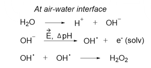 A scheme showing the proposed mechanism to form H2O2 at the air−water interface of microdroplets