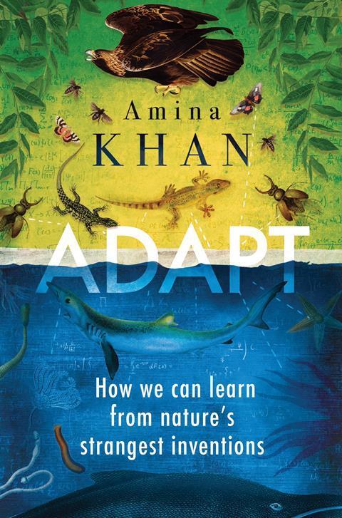 Adapt – Amina Khan
