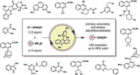 Scope of the radical alkylation of heteroarenes
