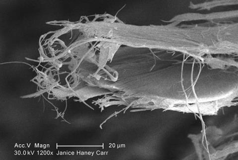 Scanning electron micrograph of chrysotile fibres