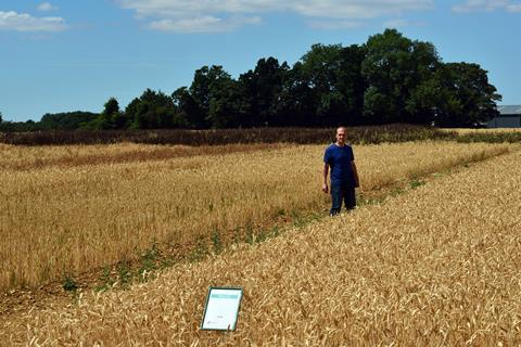 Dr Jonathon Storkey on the  Broadbalk plots