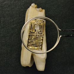 Graphene-tooth_250