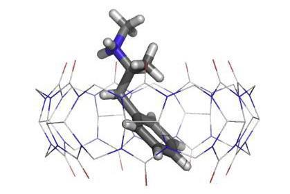 X ray single crystal structure of Cucurbit[7]uril binding an amphetamine