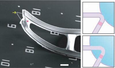 nanoelectrode-bioprobes-400