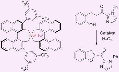 chiral-iodine-salt-catalyst-380