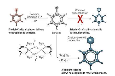 Calcium overpowers benzene