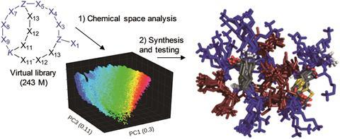 Chemical space analysis of bridged bicyclic peptides