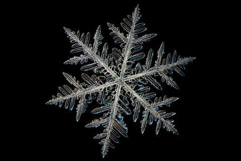 A close up photograph of a snowflake