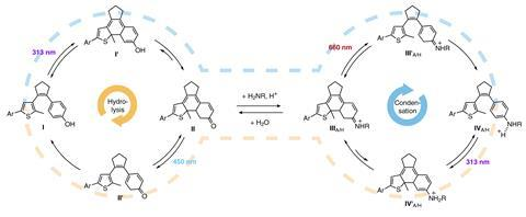 Light-driven bond formation/cleavage cycle