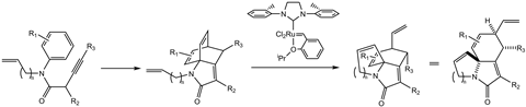The two-step reaction to form complex polycyclic lactam products