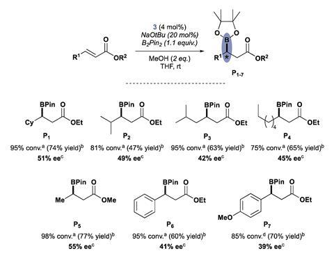 A scheme showing how the complex was tested in a variety of asymmetric conjugate borylation reactions