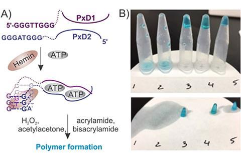 Polymerisation-based visual and tactile detection of ATP