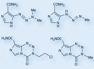 FEATURE-temozolomide-325