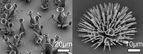 SEM of microstructures - Figures 4d & 4e