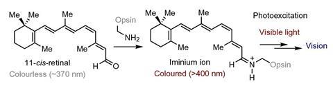 Visible light excitation of iminium for catalysis - Fig 1b
