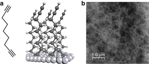 Self-assembled monolayer of nonadiyne on Si(−111) electrodes