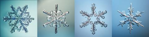 Macro photographs of snowflakes with various crystal structures