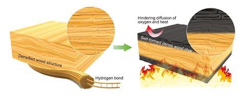 An image showing the principle of the self-formed wood char layer of densified wood for fire resistance
