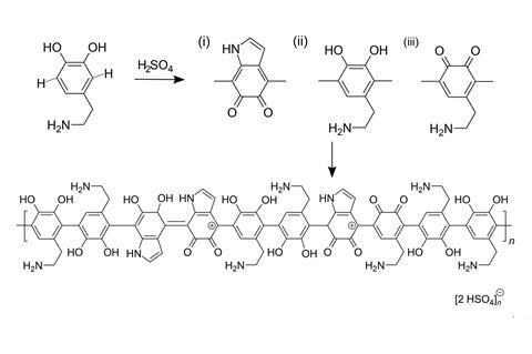 Synthesis of conductive-catalytic PDA