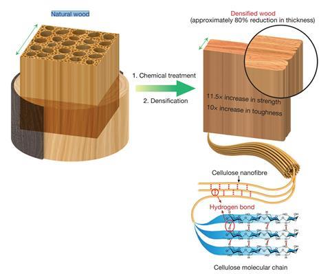 Processing approach and mechanical performance of densified wood
