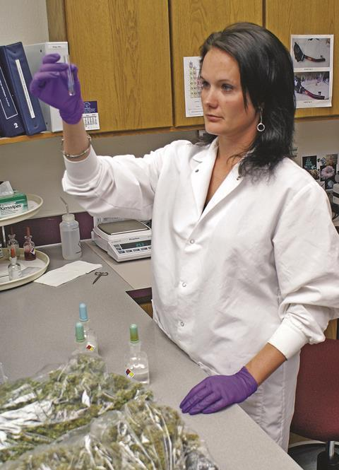 Forensic scientist Nika Larsen examines marijuana in the Oregon State Police Crime Lab in Ontario