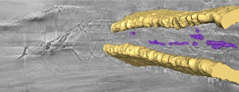 3D cryo-FIB-SEM of a zebrafish tail bone - research by Lia Addadi, Steve Weiner & Andreas Schertel