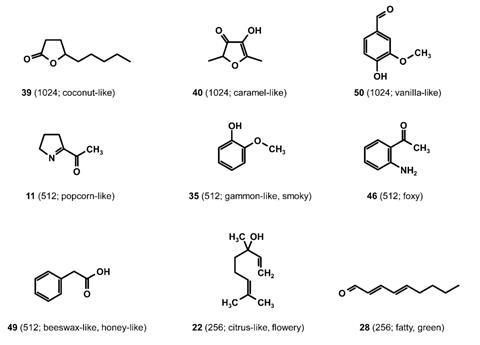 Structures of aroma-active compounds identified with high FD factors in raw  licorice