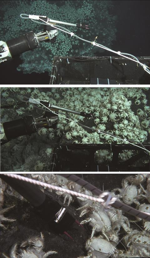 Electricity generated by hydrothermal vents - Figure 1