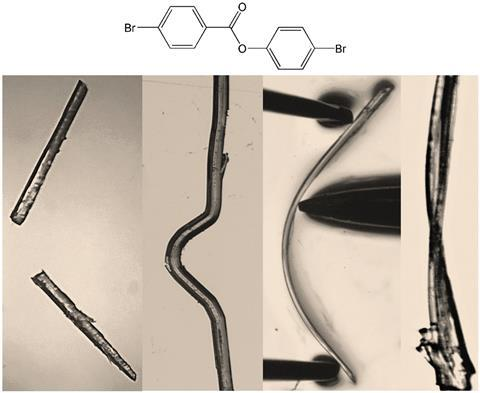 Trimorphs of 4-bromophenyl 4-bromobenzoate. Elastic, brittle, plastic