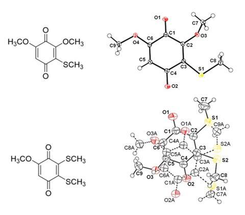 An image showing the structures of two compounds extracted from the venom of D melici