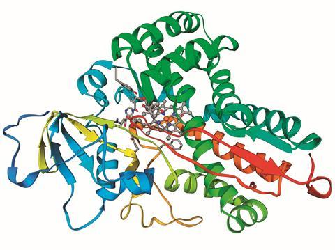 Cytochrome P450 enzyme structure