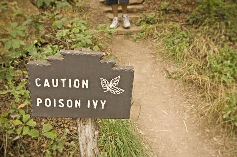 Poison Ivy (Toxicodendron radicans) sign with hiker in background